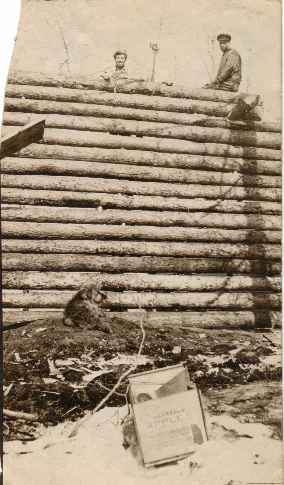 Picture of Brooks Brothers work on Log Cabin in Peace River